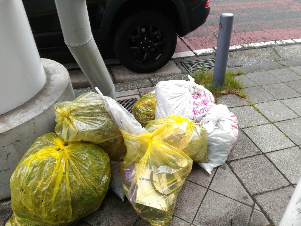 本日、ラジオ体操終了後、雨は降っていましたが、清掃活動を行いました。